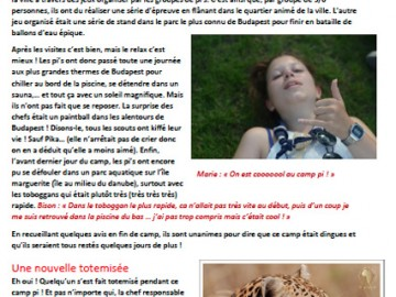 Journal de camp BIS des Pionniers