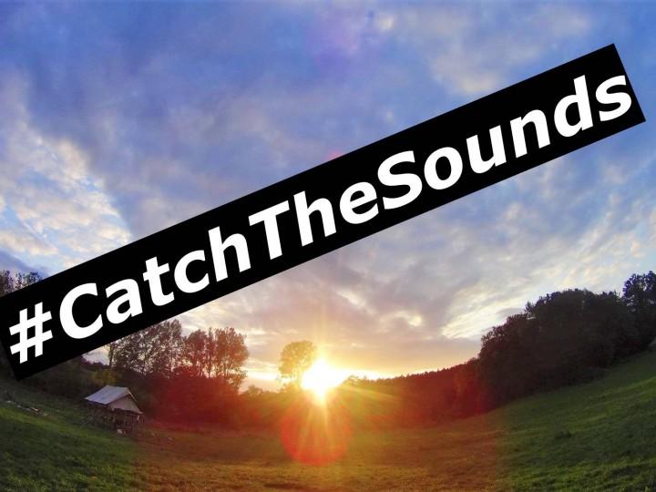 #CatchTheSounds